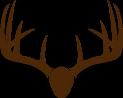 Deer Horn Drawing at GetDrawings.com | Free for personal use Deer ...