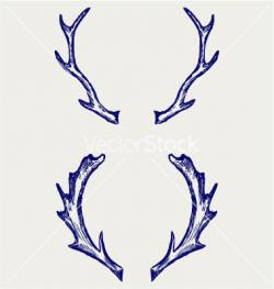 Deer Antler Drawing at GetDrawings.com | Free for personal use Deer ...
