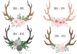 Floral antlers clipart, boho clipart, deer antlers clipart, bohemian ...