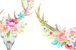 Waterolor Boho Antlers Floral Antler ~ Illustrations ~ Creative Market