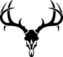 deer%20skull%20drawing | deer pics | Pinterest | Antlers, Cricut and ...