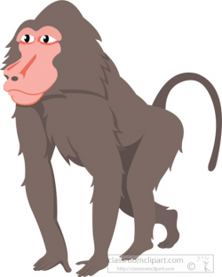 Animal Clipart - Baboon Clipart - baboon-clipart-2-530 - Classroom ...