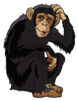Monkey PNG Clipart Image | Gallery Yopriceville - High-Quality ...