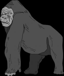 Gorilla Clipart Free - ClipartXtras