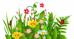 Cute Grass and Flowers PNG Clipart | Gallery Yopriceville - High ...