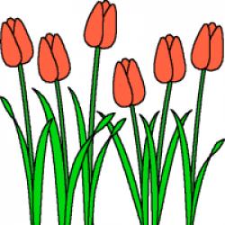 News & Blogs - Canadian Association of the Deaf - Association des ...
