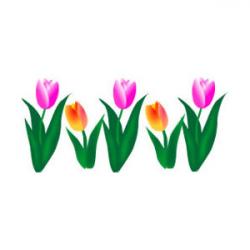 Tulip clipart spring tulip - Pencil and in color tulip clipart ...