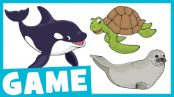 Learn Aquarium Animals | What Is It? Game for Kids | Maple Leaf ...