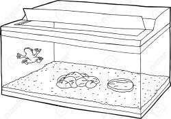 Aquarium clipart outline - Pencil and in color aquarium clipart outline