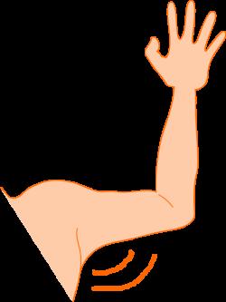 Clipart - arm pit