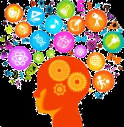 Social Brain Interaction Study