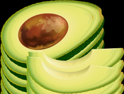 Unique Avocado Clipart Gallery - Digital Clipart Collection