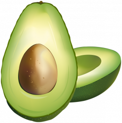 Avocado PNG Clip Art | Gallery Yopriceville - High-Quality Images ...