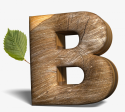 Creative Letters, Letter, Wood Letters, B PNG Image and Clipart for ...