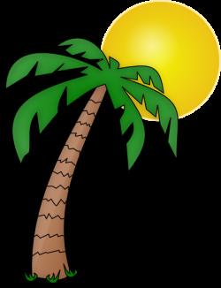 Palm Tree Clip Art Transparent Background | Clipart Panda - Free ...