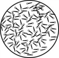 Search Results for bacteria - Clip Art - Pictures - Graphics ...