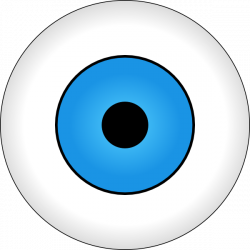 Eye Ball Clipart   Free download best Eye Ball Clipart on ClipArtMag.com
