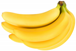 Large Bananas PNG Clipart | Gallery Yopriceville - High-Quality ...