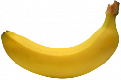 Large Banana PNG Clipart | Gallery Yopriceville - High-Quality ...