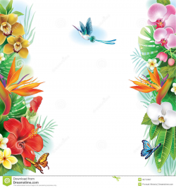 Free Tropical Banner Clipart