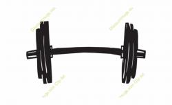 Plate Clipart Weight Lifting - Transparent Weight Clip Art ...