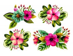 Floral clipart,tropical watercolor clipart, leaves clipart, floral ...