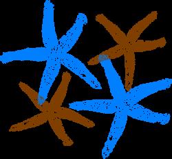 Starfish Prints Clip Art at Clker.com - vector clip art online ...