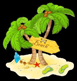 Transparent Beach Palm Decor PNG Clipart | природные явления ...