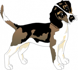Black And White Beagle Clip Art at Clker.com - vector clip art ...