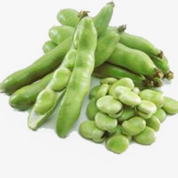 Green Beans, Green, Broad Bean, Food PNG Image and Clipart for Free ...