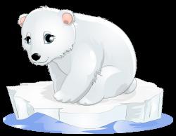 Polar Bear Transparent Clipart | Gallery Yopriceville - High ...