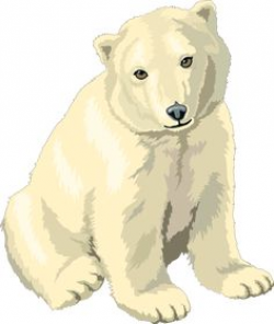 Free Polar Bears Clipart. Free Clipart Images, Graphics, Animated ...