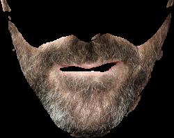 Beard PNG Images Transparent Free Download   PNGMart.com