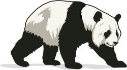 Free Panda Bear Clipart