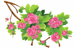 Spring Branch Transparent PNG Clipart Picture | Gallery ...
