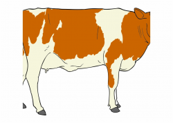 Png Transparent Library Beef Cow Clipart - Male Cow Clipart ...