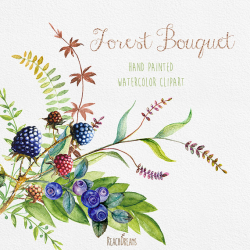 Berries Watercolor ClipArt. Hand Drawn Blueberry Blackberry