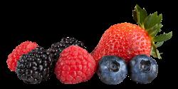 Berries Transparent PNG   PNG Mart