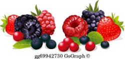 Vector Art - Collection cartoon fruit and berries. Clipart Drawing ...