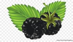 Blackberry Fruit Clip art - watercolor berries png download - 1280 ...