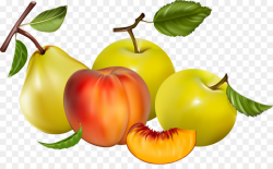 Berry Fruit Tomato Clip art - berries png download - 1500*907 - Free ...