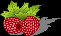 Clipart - raspberries, avietes, berries, uogos, food