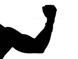 Muscle Silhouette at GetDrawings.com | Free for personal use Muscle ...