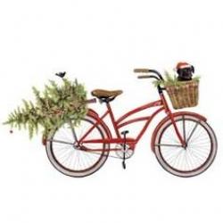Melissa Shirley Designs | Hand Painted Needlepoint | Christmas Bike ...