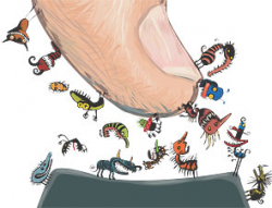 Germs | PKIDs Blog
