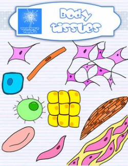 Plant and Animal Cell organelles and tissues clipart {Science clip ...