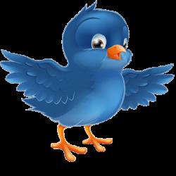 Cartoon Blue Birds | blue bird cartoon images cartoon bird images of ...