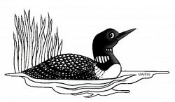 United States Clip Art by Phillip Martin, Minnesota State Bird - Loon