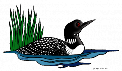 Loon Clipart   Clipart Panda - Free Clipart Images   june the loon ...