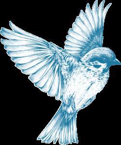 Clipart - Vintage Blue Bird